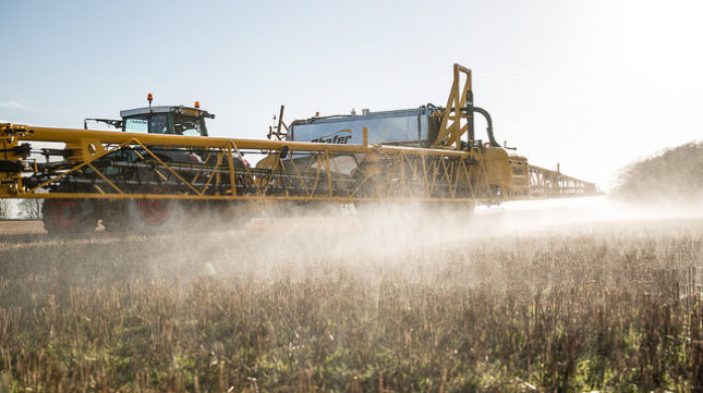 Why + How to Avoid Glyphosate
